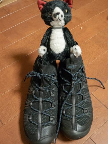 通勤靴になれるか KEEN アクシス エヴォ MID